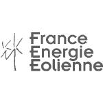 FFE logo